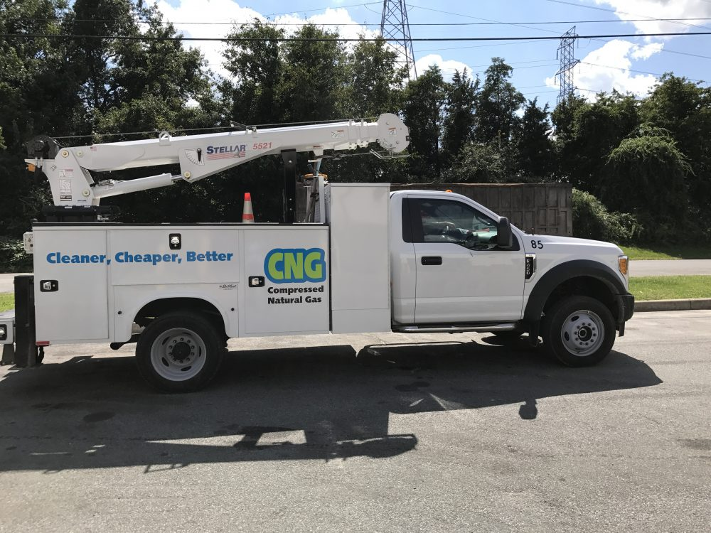 CNG IMG 5477 1 - CNG